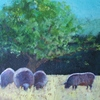 sheep, country scene, grazing