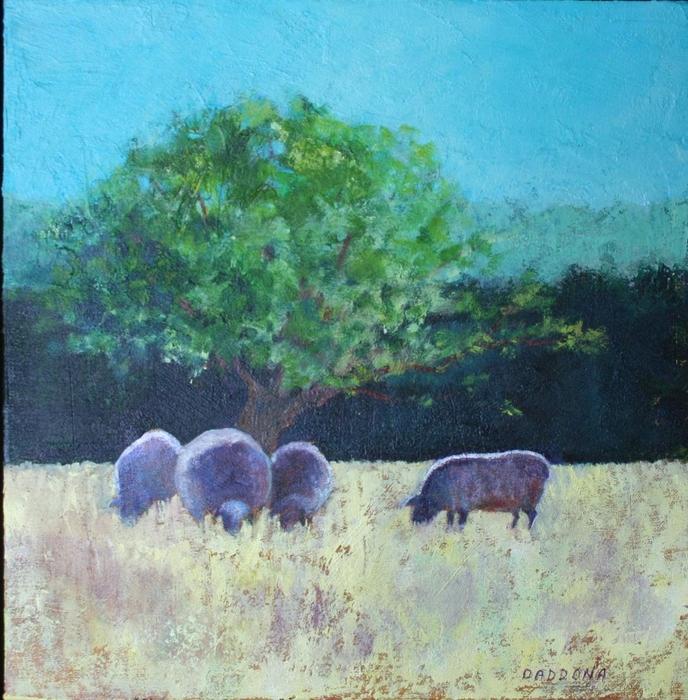 sheep, country scene, grazing