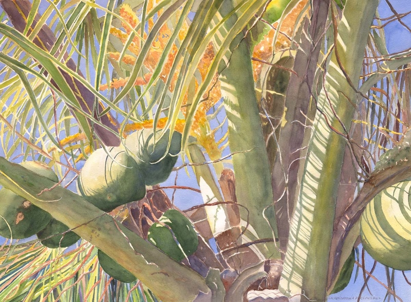 Palm trees, coconuts, light, reflections, shadows